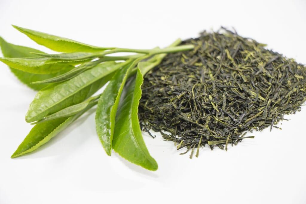お茶の保存方法(開封後)