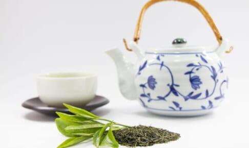 お茶の賞味期限とは?いつまで飲める?期限切れのお茶を活用する方法