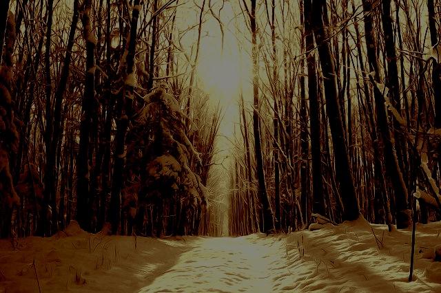 幽霊の経験談(5)【芦屋道顕】復讐後に彷徨った200年の話【怨霊の行方】