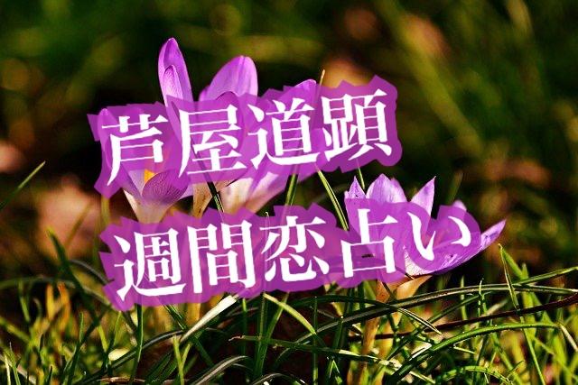 【新月】2月8日-2月14日の恋愛運【芦屋道顕の音魂占い★2021年】