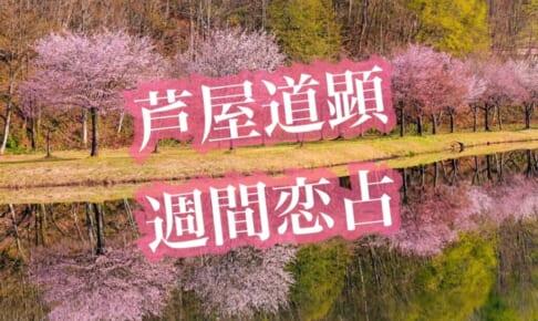 【満月から清明】3月29日-4月4日の恋愛運【芦屋道顕の音魂占い★2021年】