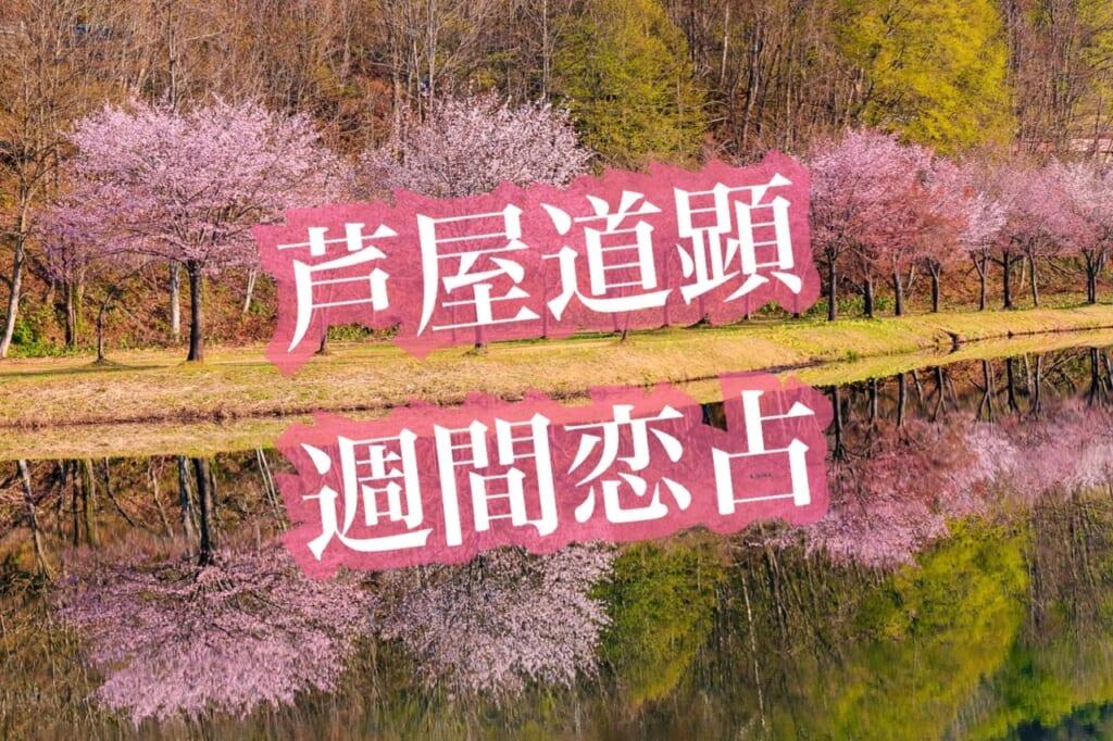 【春分】3月15日-3月21日の恋愛運【芦屋道顕の音魂占い★2021年】