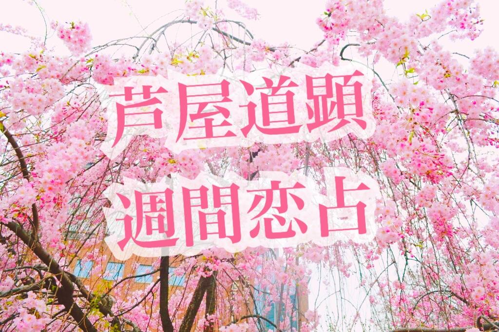 4月5日-4月11日の恋愛運【芦屋道顕の音魂占い★2021年】
