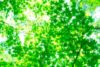 今日も一日HAPPYに★【気学】(9月18日の運勢)希翔の毎日メッセージ